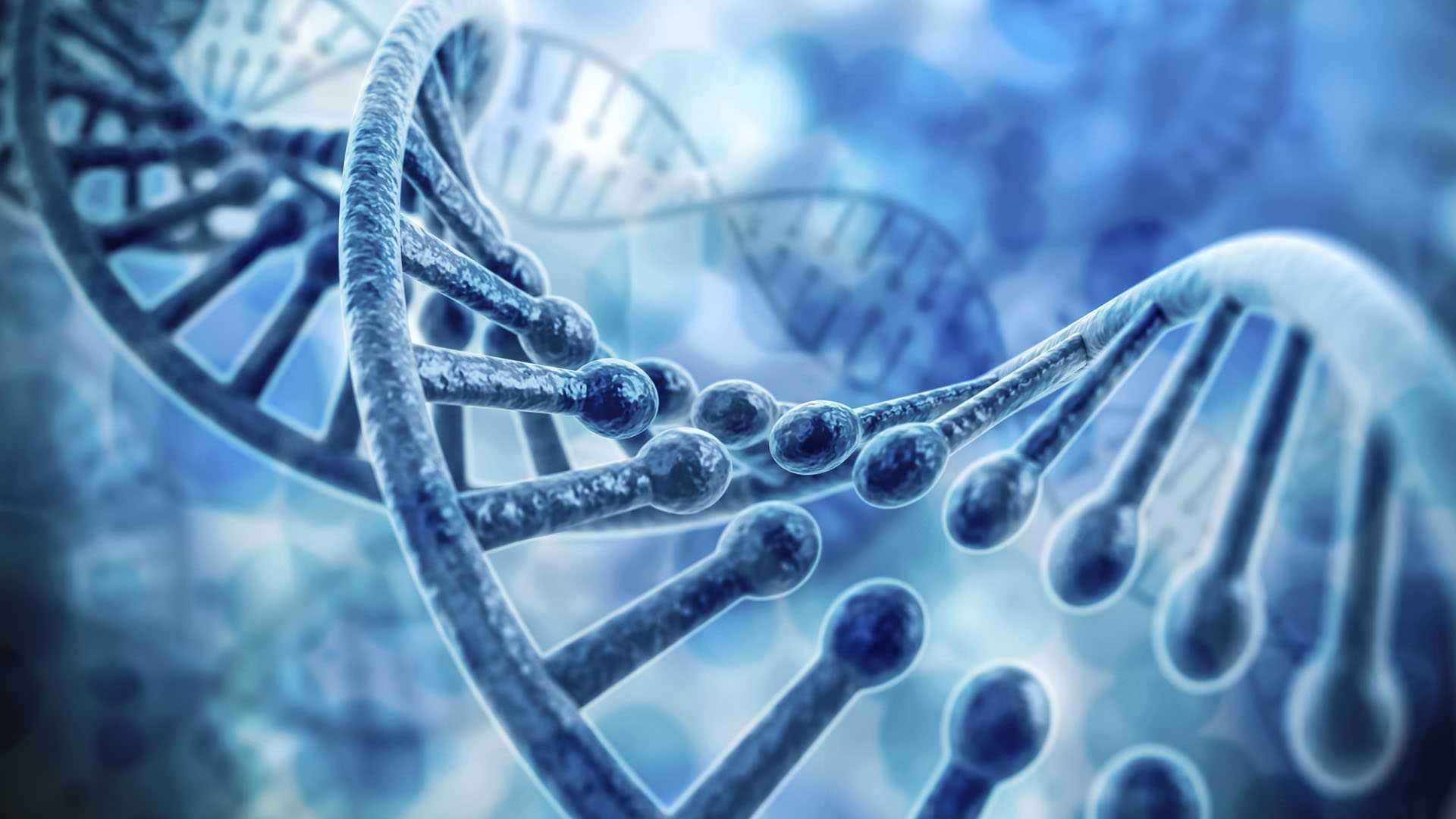 A representation of DNA.