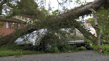 Storm damage April 5, 2017
