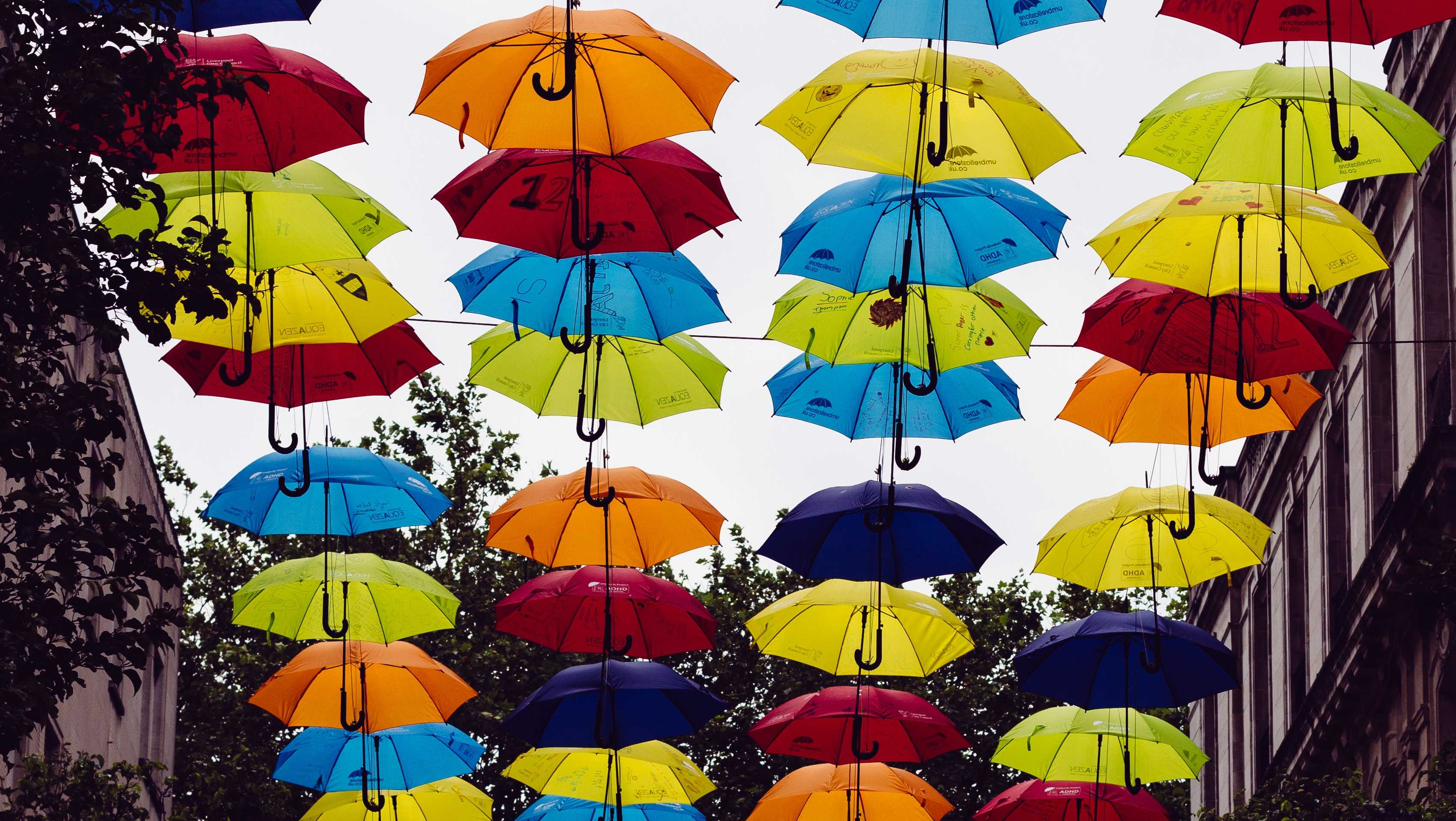 best umbrellas gift guide