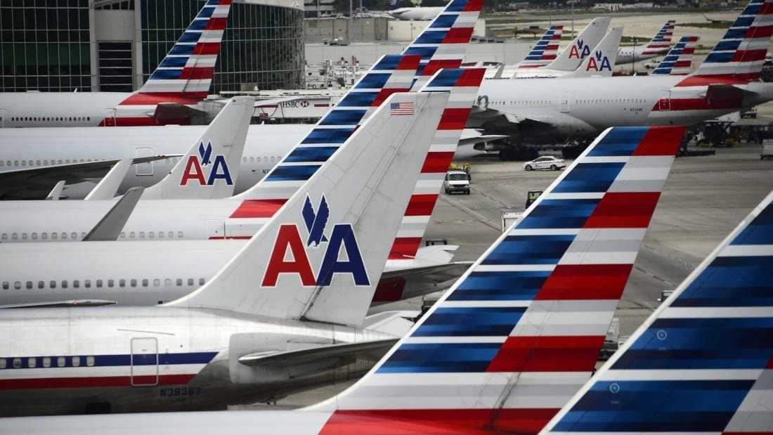 American Airlines is making it very clear: Insects, goats and hedgehogs cannot be brought on planes as emotional support animals.