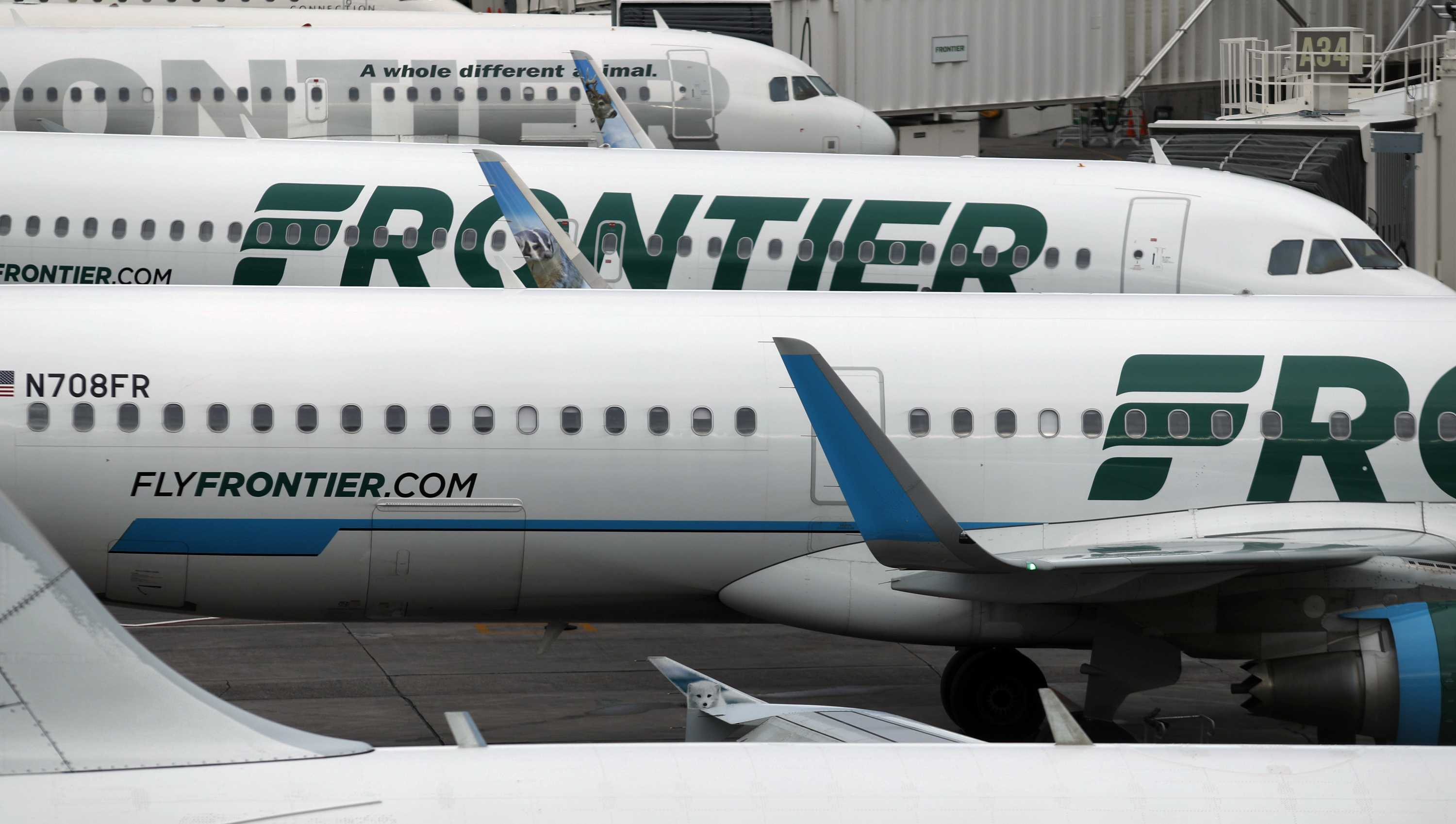 In this May 15, 2017, photo, Frontier Airlines jetliners sit stacked at gates.