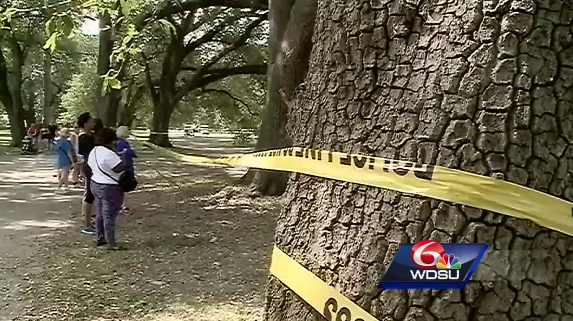 Coroner's Office identifies body found at Audubon Park