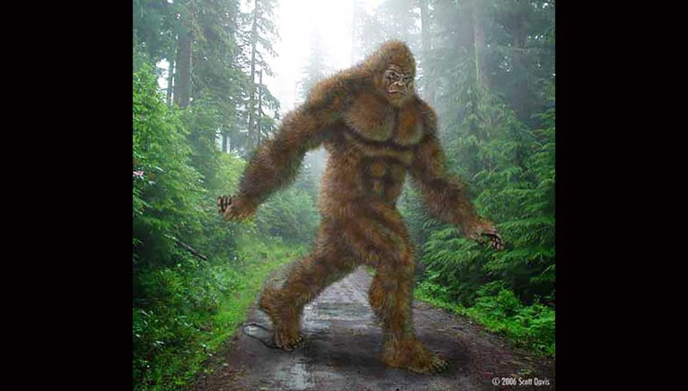 'Don't shoot' Chilling warning after footage of Bigfoot sighting goes viral