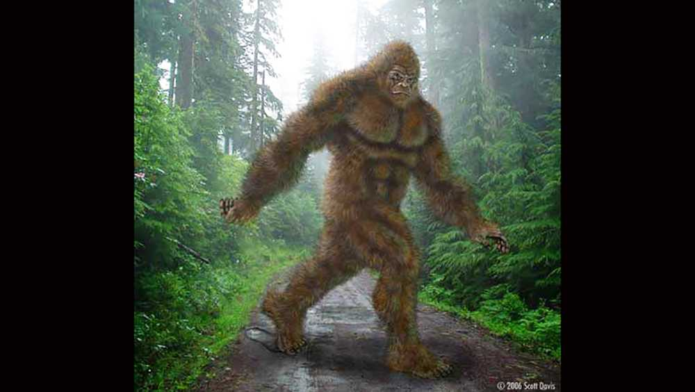This depiction of Bigfoot appears on the group Bigfoot 911's Facebook page