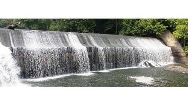 Officials celebrate Bloede Dam removal at bank of Patapsco River
