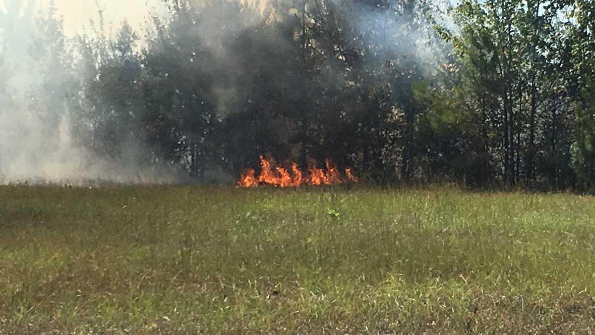 McCalla brush fire