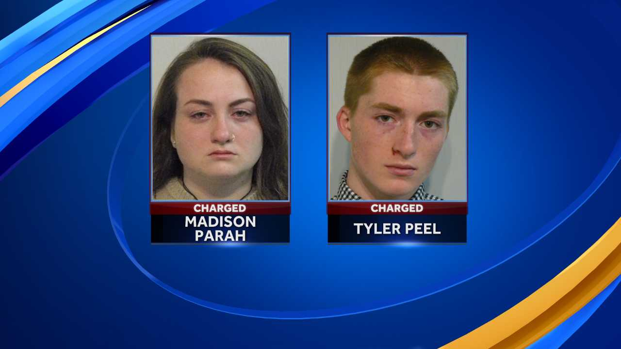 Teens charged in connection to Exeter car thefts, vandalism