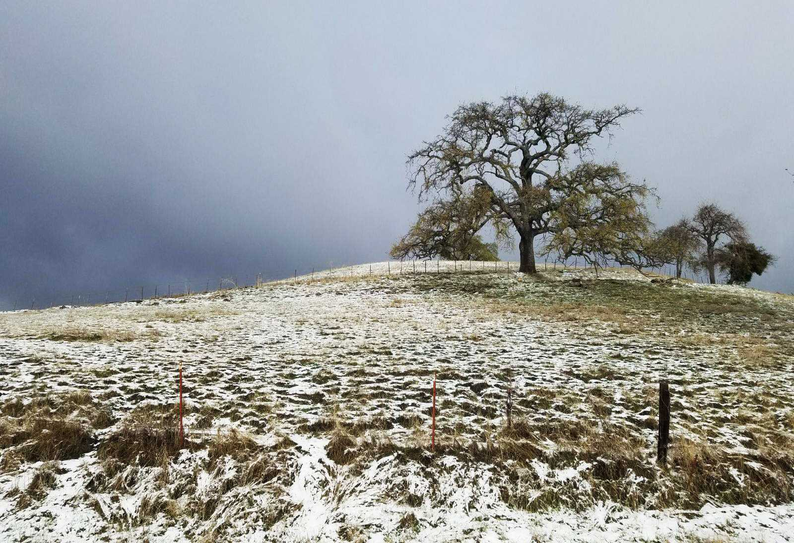 Cold Front Sends Temperatures Tumbling To Record Lows
