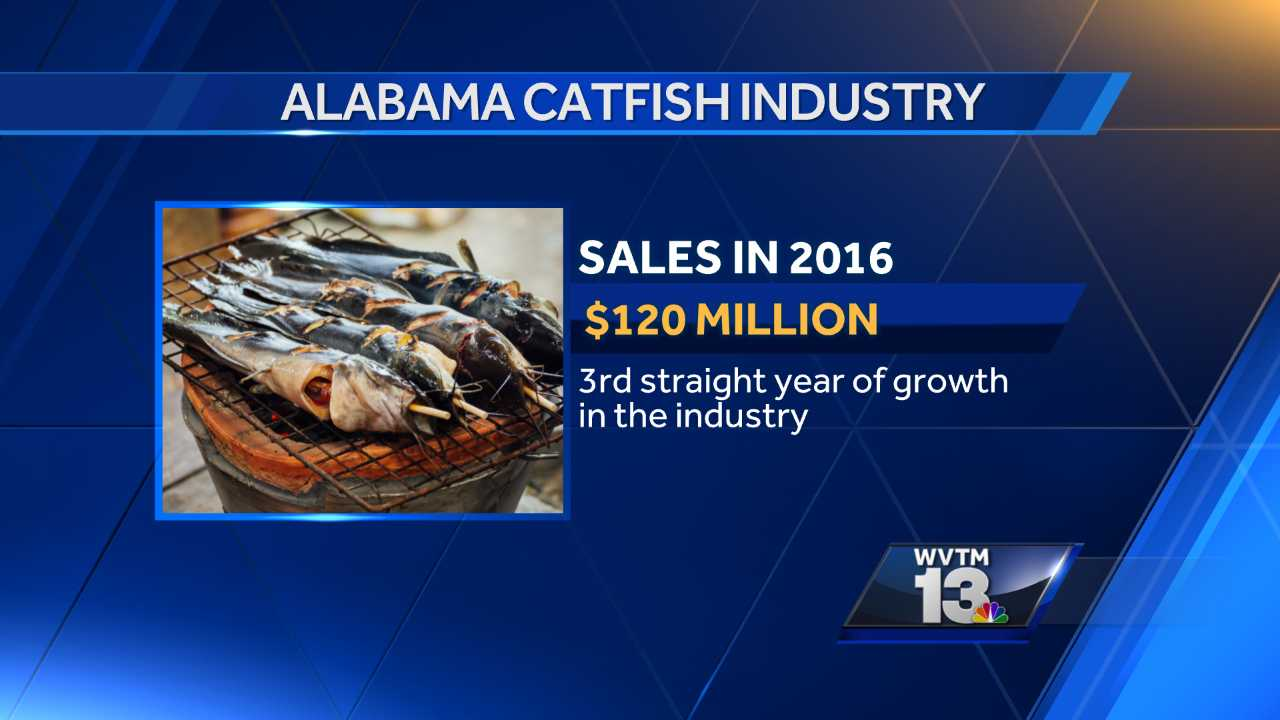 Alabama catfish industry