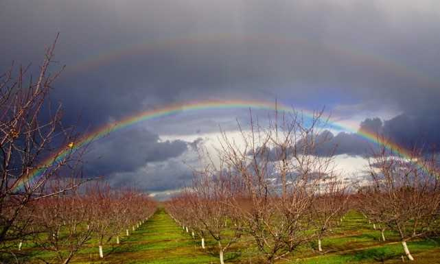 Rainbow spotted over Escalon, California, on Monday, Jan. 23, 2017.
