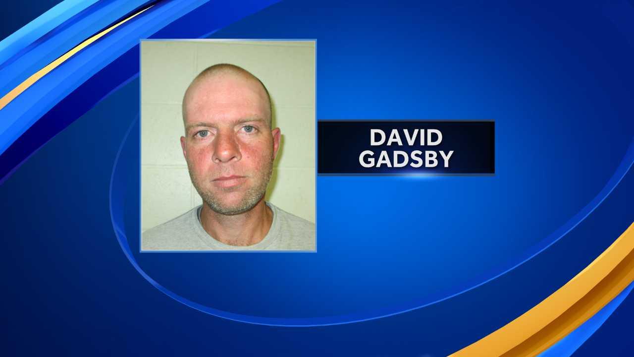 David Gadsby