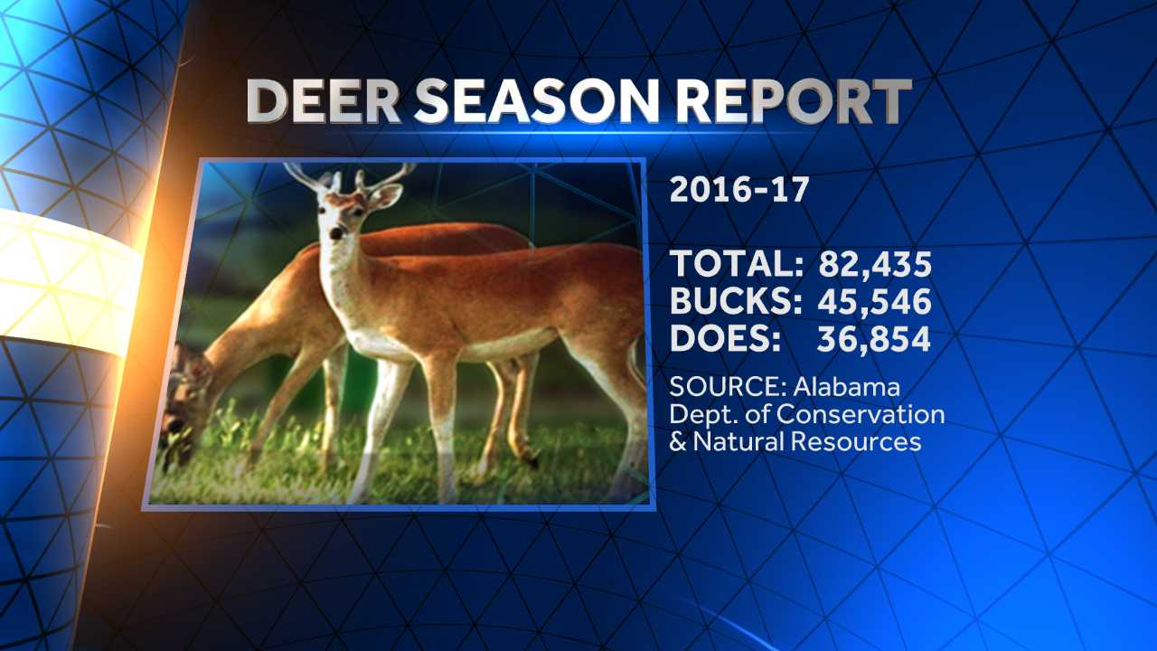 The Alabama Department of Conservation and Natural Resources says hunters killed more than 82,000 deer in Alabama this past hunting season.