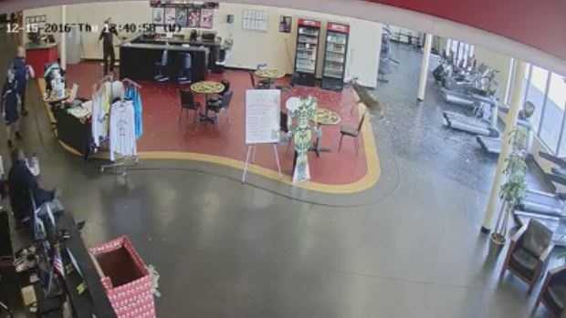 Deer crashes through gym window