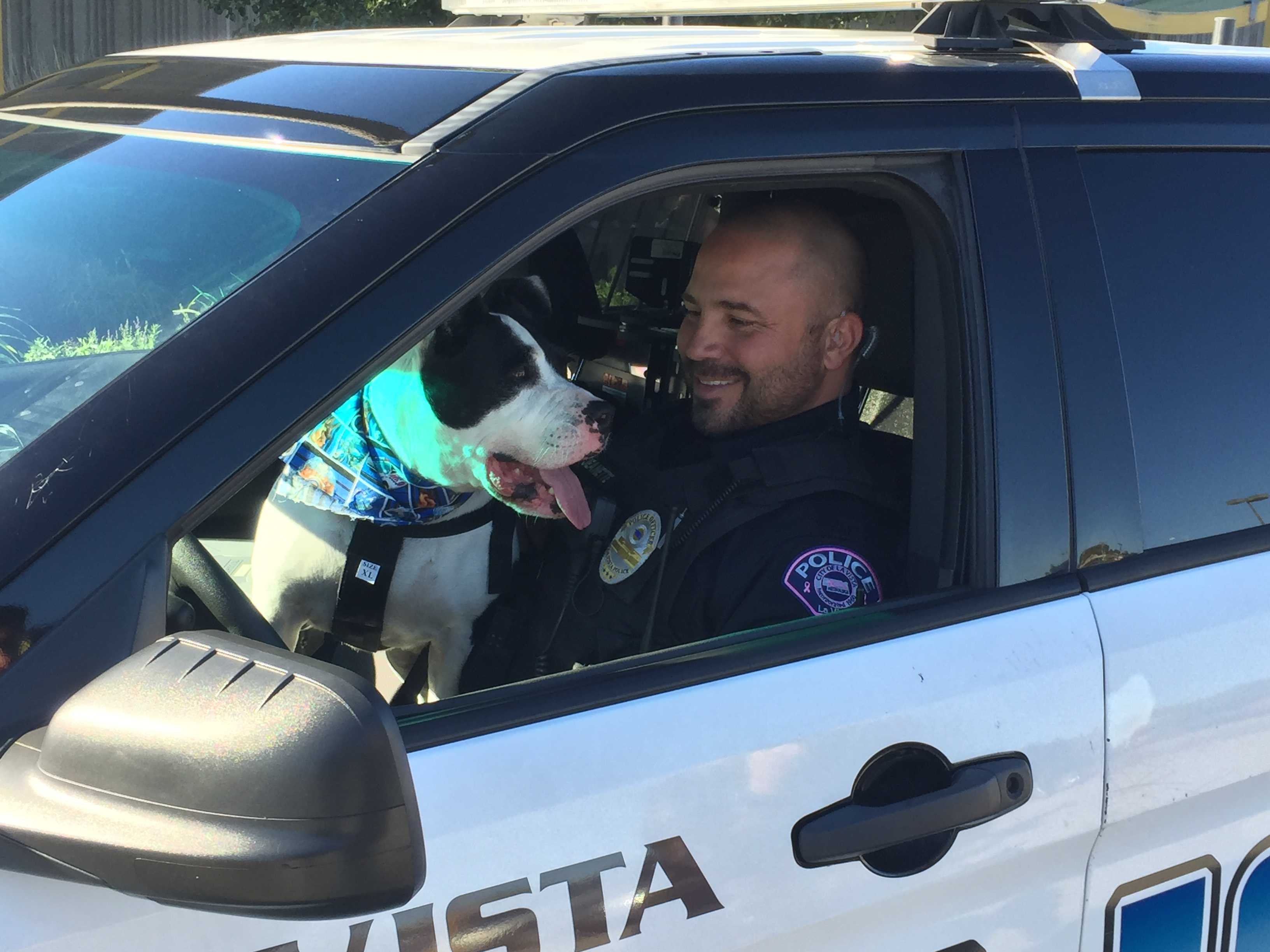 "Shelter dog becomes ""K-9 cop"" for the day to help adoption"