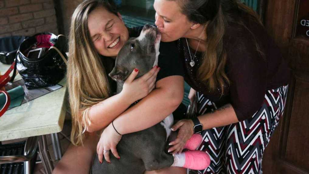 Christi Fauver and her daughter Hailey Shores are pictured with Liberty, the 1-year-old pit bull that they are fostering, on Tuesday, Oct. 3, 2017.