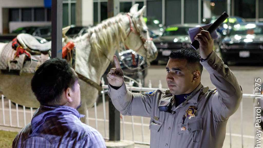 Drunk man arrested after riding horse onto Socal freeway