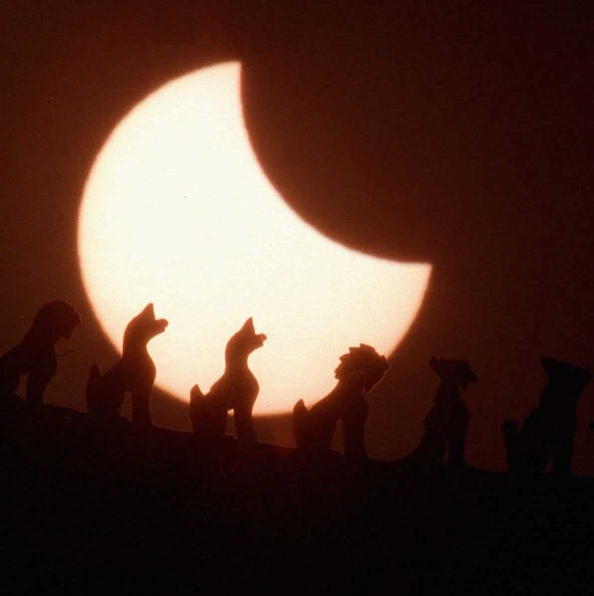 A solar eclipse seen from Beijing on March 9, 1997. Sky gazers in China and Russia got a double delight when the sun disappeared behind the moon in a total solar eclipse that coincided with a rare view of the bright Hale-Bopp comet.