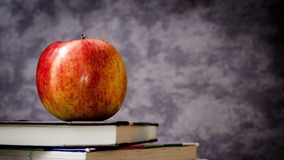 Generic education image