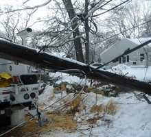 Power lines down in Westwood