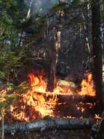 White Mountain National Forest fires