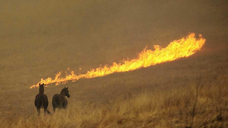 Napa wildfire