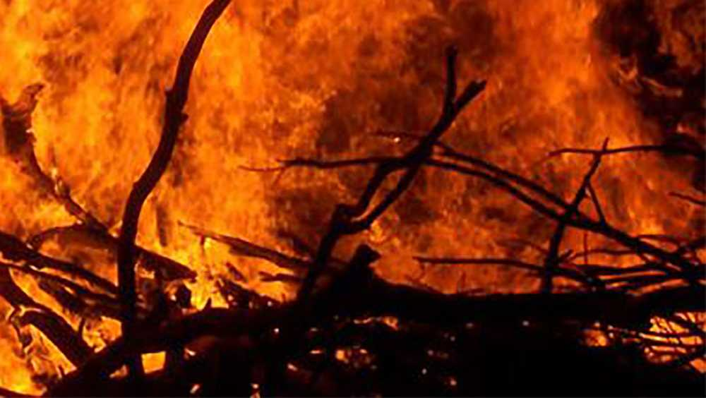 brush fire generic - 14534981