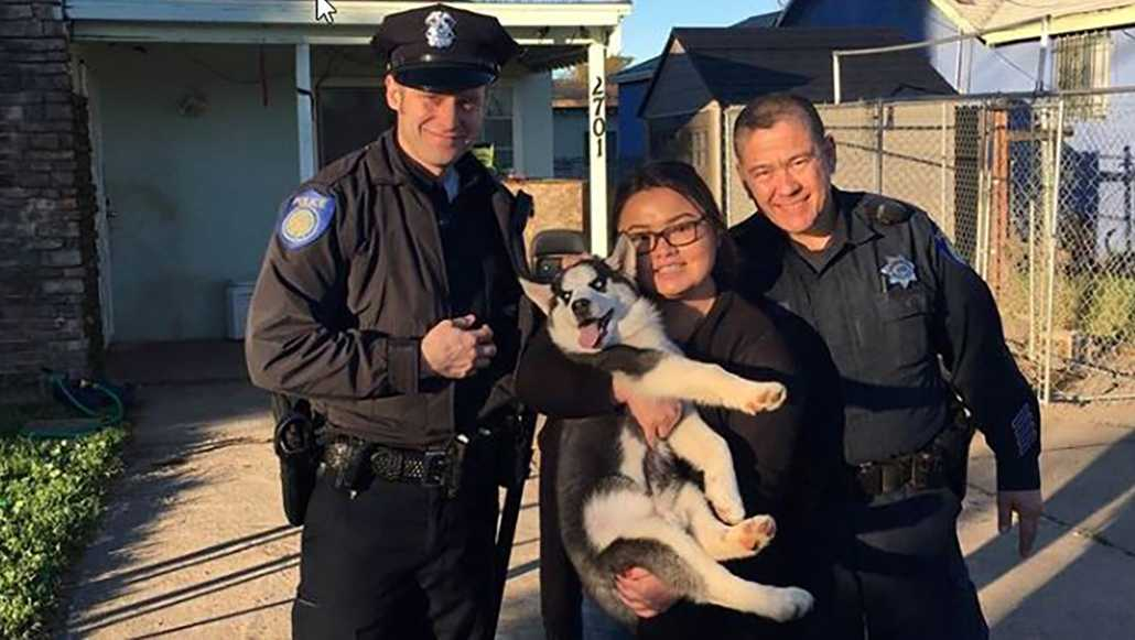 A Franklin woman has been reunited with her missing puppy, which was stolen from her front yard in late December, Sacramento police said on the department's Facebook page. Jan. 14, 2017