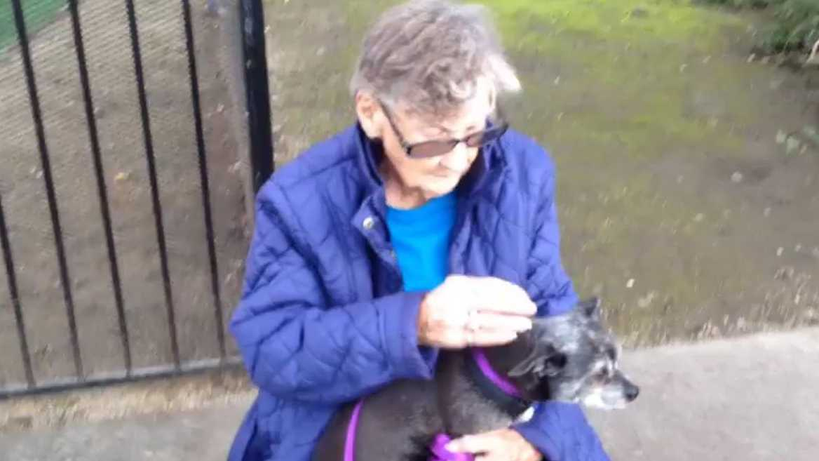 A 92-year-old woman was forced to give up her dog because she had to move into a nursing home, the Front Street Animal Shelter said on Dec. 21, 2016.