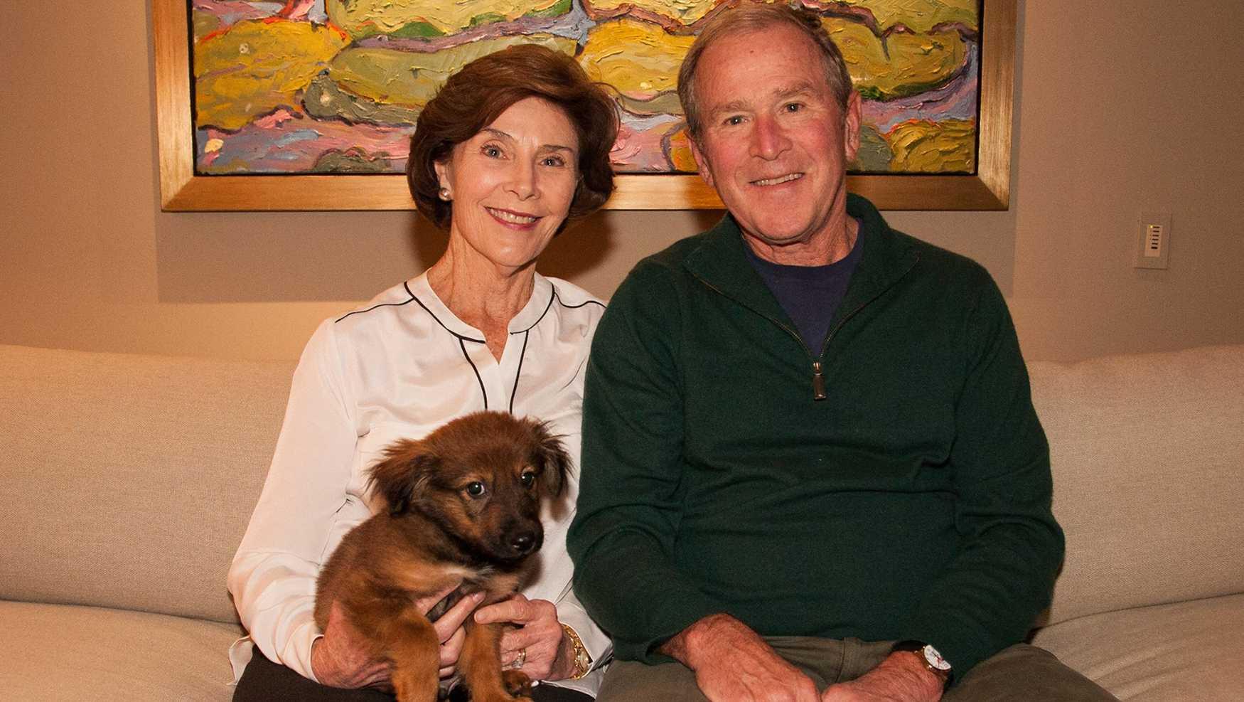 George W. Bush's new puppy