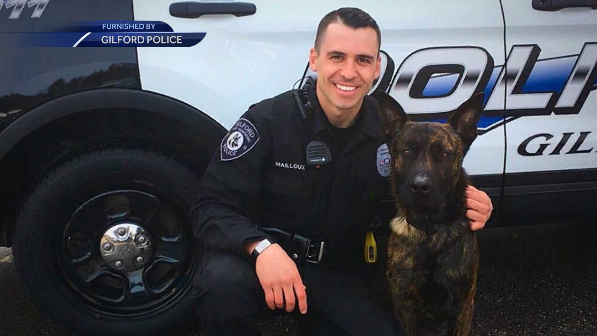 New Gilford police K-9 arrives from the Netherlands