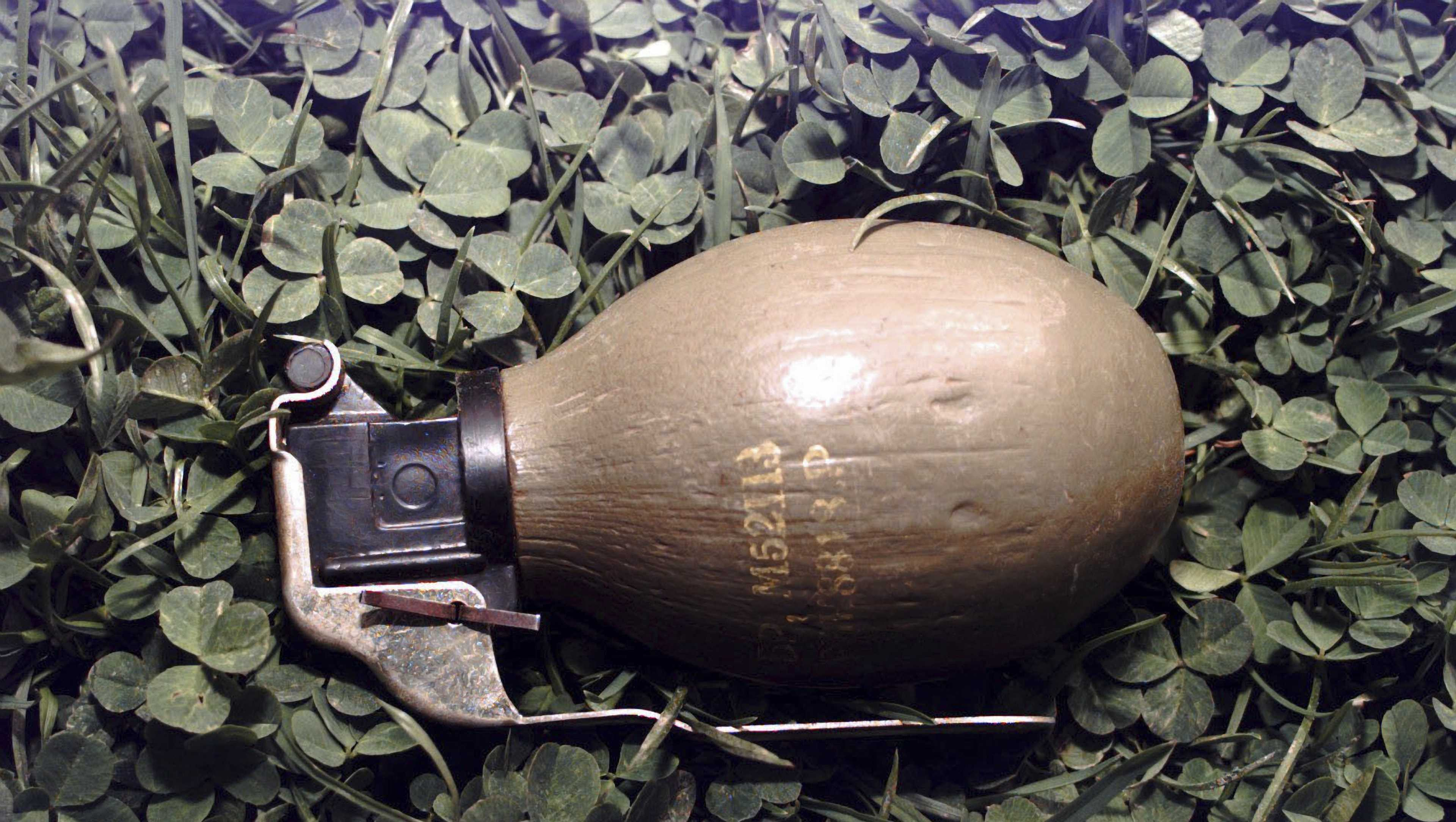 This file image shows a close-up view of a M69 anti-personnel hand grenade.