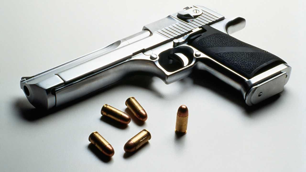 Gun, Handgun, Bullets