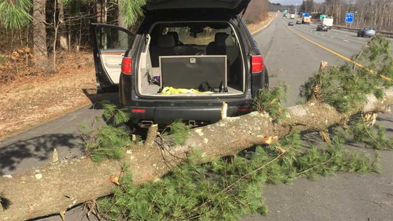 Winds topple trees across Granite State