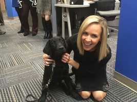 Charlie, who is being trained to be a service dog with America's VetDogs, spends a couple of quality minutes with 11 News reporter Sarah Caldwell