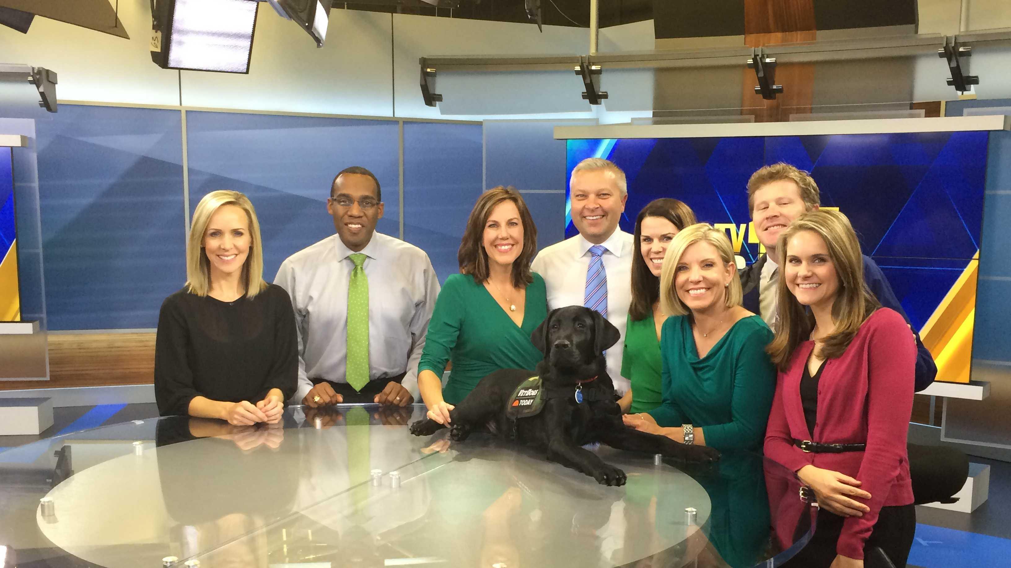 Charlie, who is being trained by America's VetDogs to be a service dog, visits with the 11 News today team