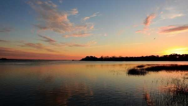 Image result for winter landscape in the lowcountry