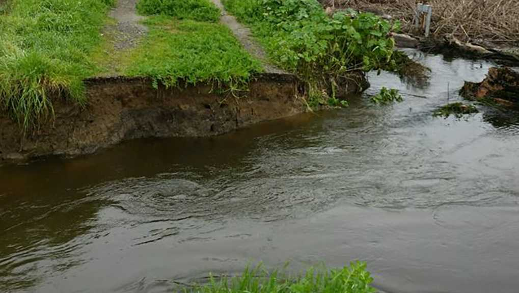 A levee broke in White Slough State Wildlife Area near Lodi Saturday Jan. 14, 2017