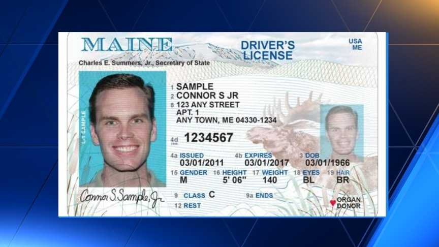 Maine Driver's License