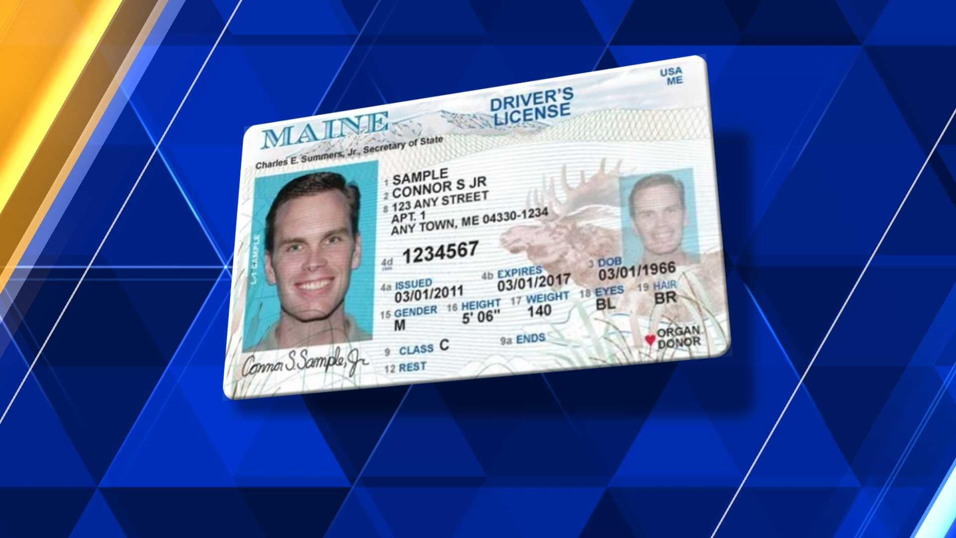 Maine ID, license