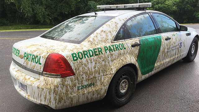 Border patrol car covered in manure