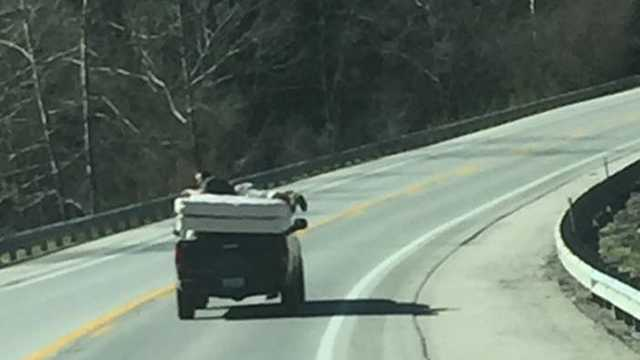 Man rides a mattress on a pickup truck in Kentucky in March 2017