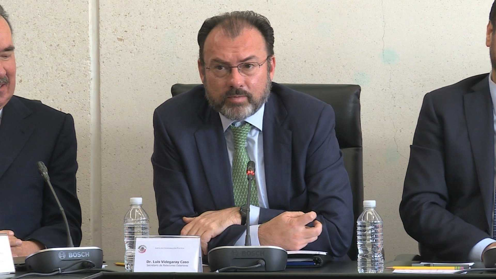Mexican Secretary of Foreign Affairs Luis Videgaray