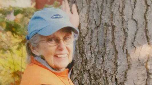 Sanbornton woman missing after taking dog for walk