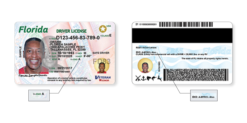 Florida Driver's Licenses, ID Cards Get Fresh, Secure Design in August