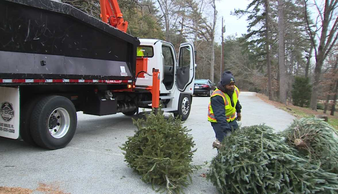 Hoosiers Reminded To Properly Dispose Their Live Christmas Trees