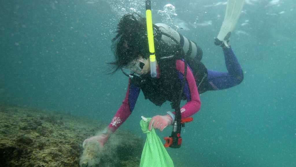 Emi Poppas picks up garbage in the ocean in Hilo, Hawaii, as part of the largest ever International underwater cleanup effort organized by Project Aware. Divers.