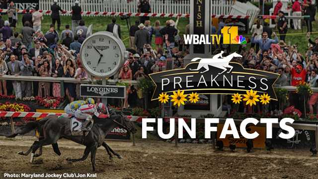Preakness Fun Facts
