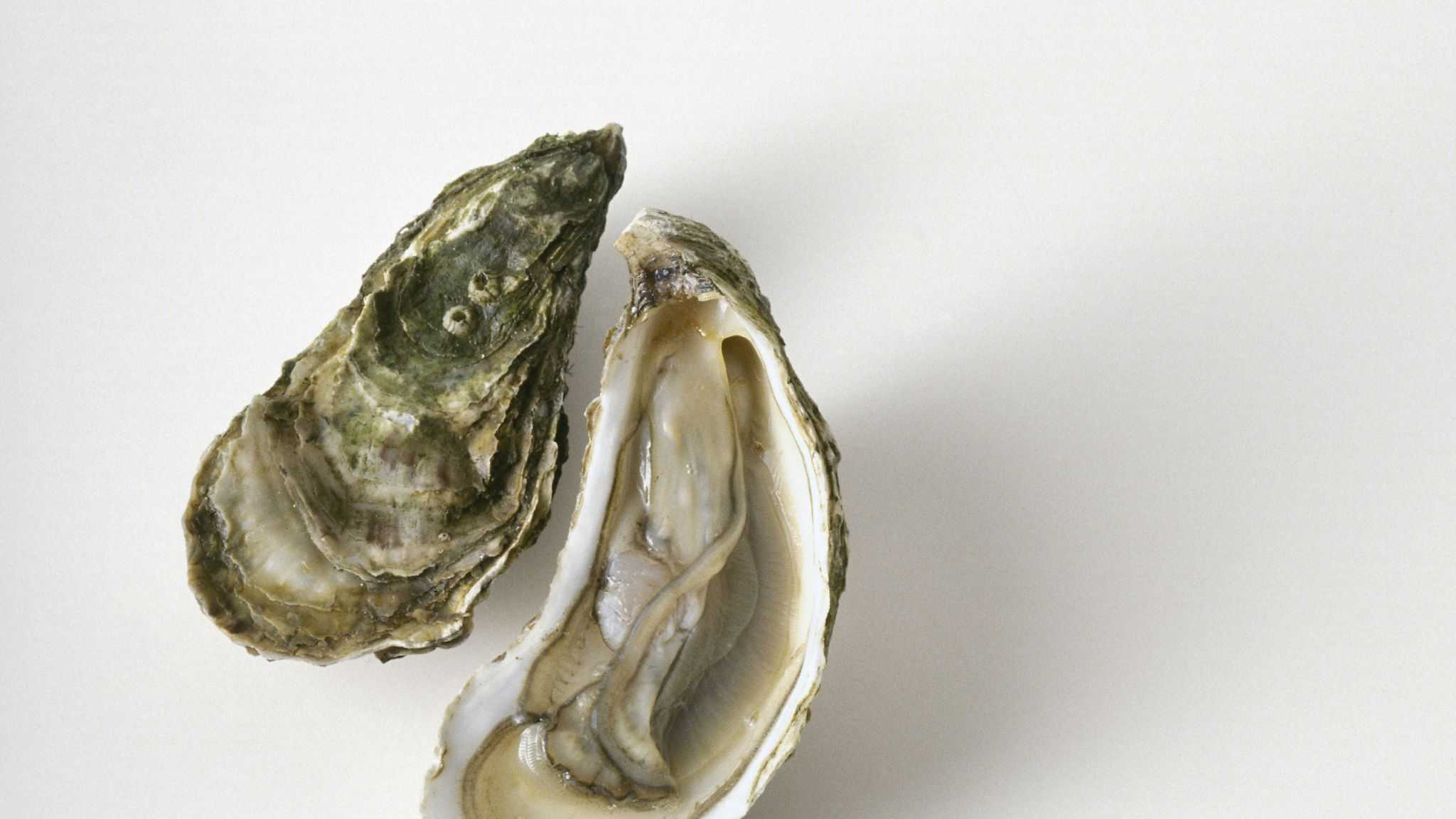 A 71-year-old man died after consuming flesh-eating bacteria on an oyster