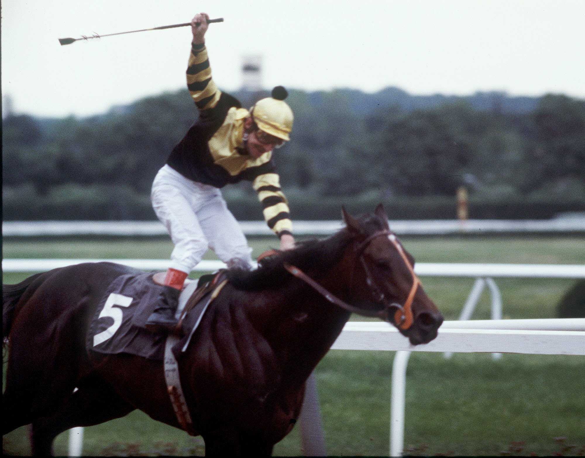 Jockey Jean Cruget stands up in his saddle and celebrates after guiding Seattle Slew to victory in the Belmont Stakes at Belmont Park in Elmont, N.Y. on June 11, 1977.