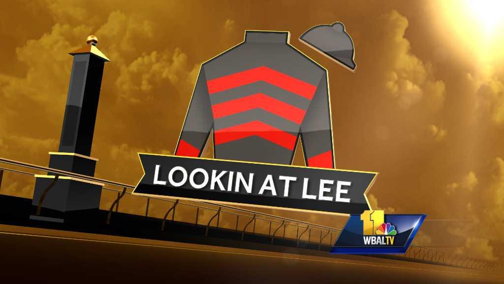Lookin At Lee silk